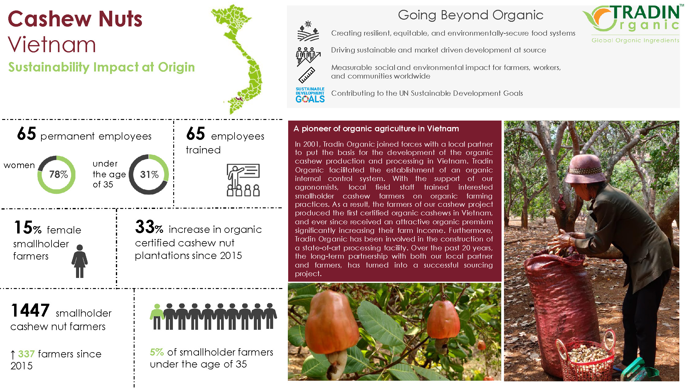 Tradin Organic Cashew Vietnam - Impact at Source - 2021_Page_1