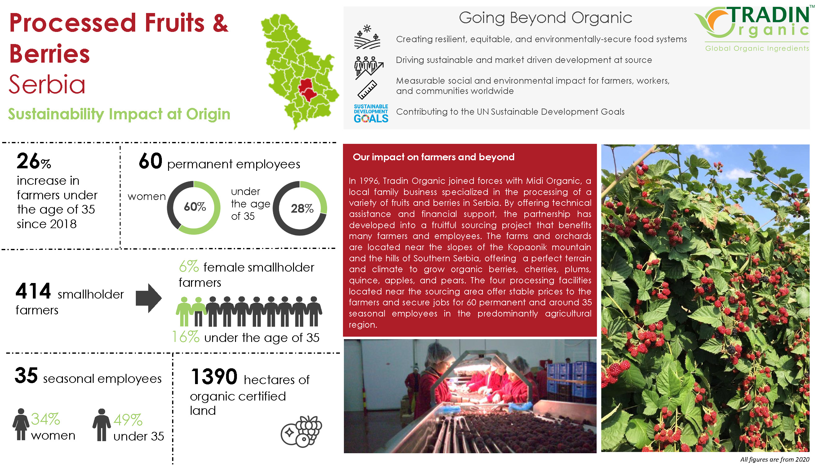 Tradin Organic Berries and Fruit Impact at Source_Page_1